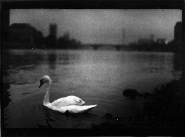 05_PressImage l Giacomo Brunelli, Untitled from the series Eternal London, 2012-2013