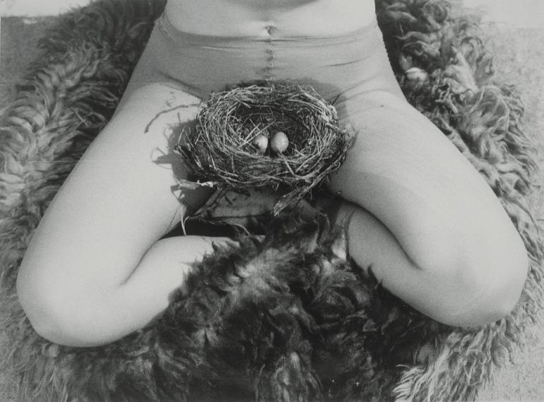 04_pressimage-feministag-l-bjurgenssen-nest-1979