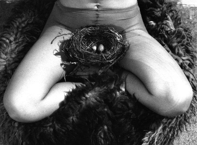 birgitjurgenssen_nest1979